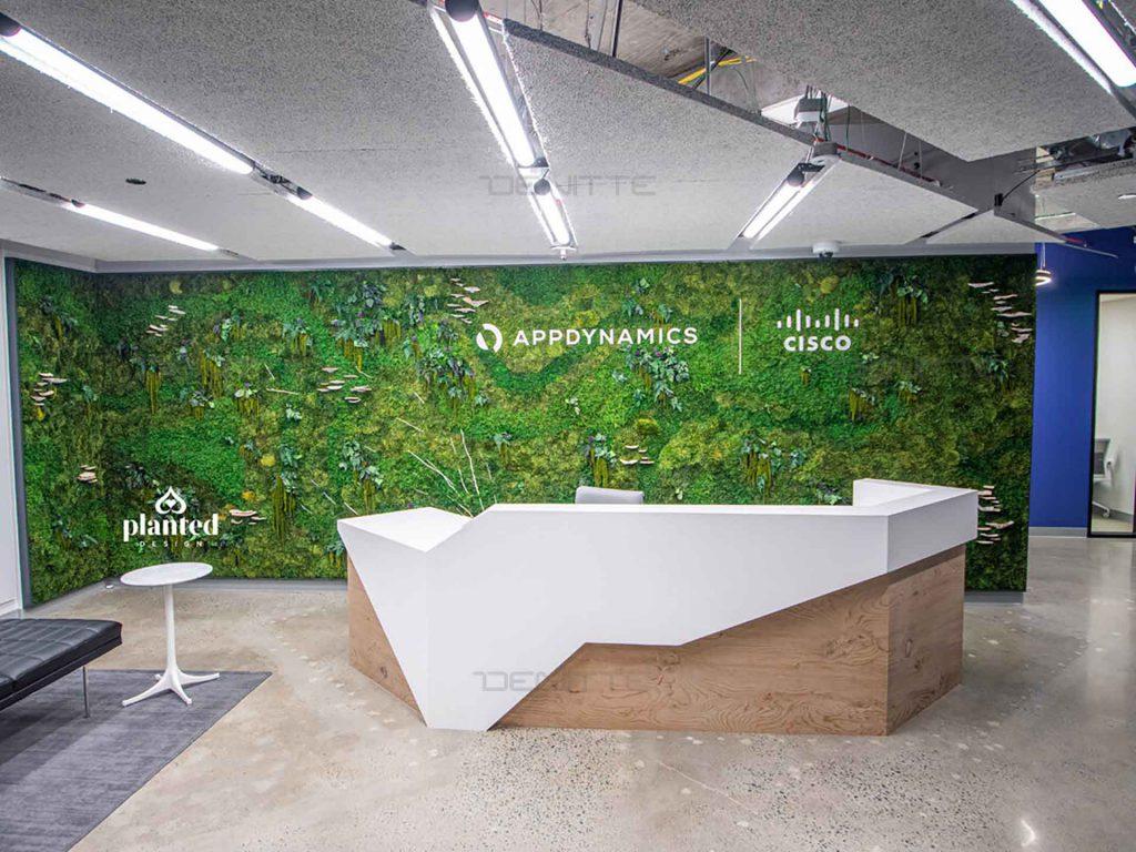 طراحی دکوراسیون سبز 